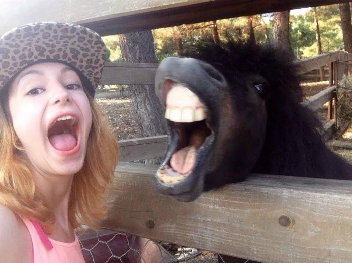 Кто стоматолог, не подскажите? | Фото: sympaty.tumblr.com.