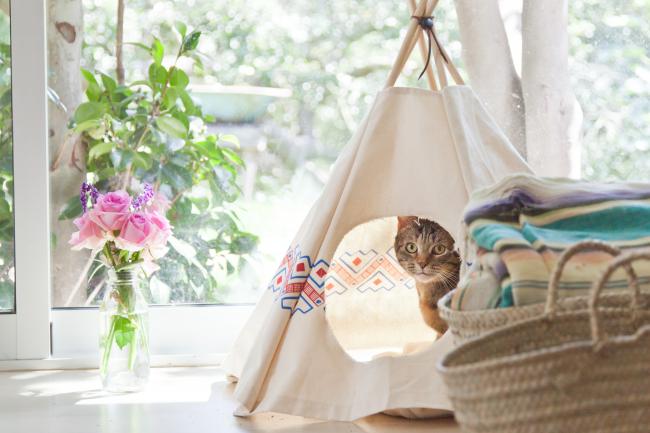 Вигвам для кота - простой способ украсить комнату и подарить кошке свой уголок