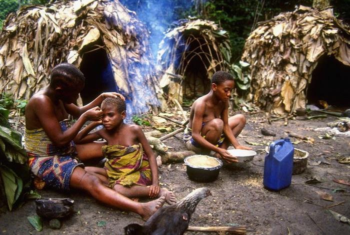 Мбути обменивают добычу на блага цивилизации у жителей деревень, расположенных неподалеку