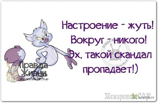 https://3.404content.com/1/AA/E2/1040414595851487096/fullsize.jpg