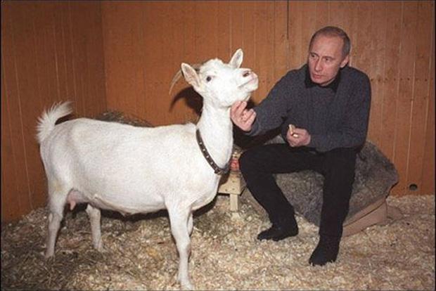 Что дарят Путину бизнесмены и политики