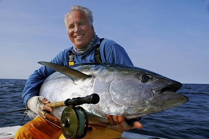 Вес голубого тунца может составлять до 450 кг. / Фото: moneyscanner.net