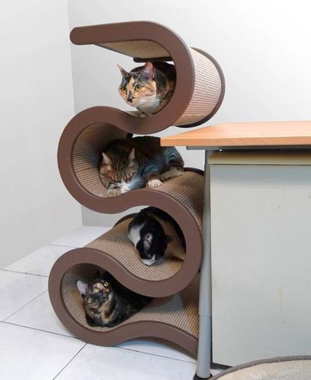 Спальня для любимой кошки: 10 милых идей фото 3