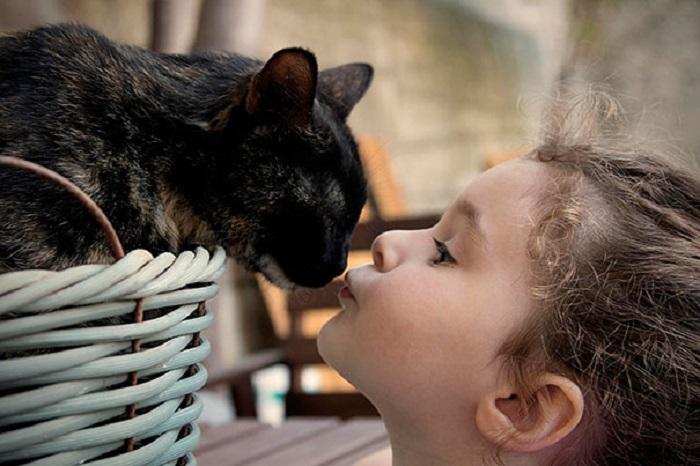 Нежные и милые: дети и кошки.