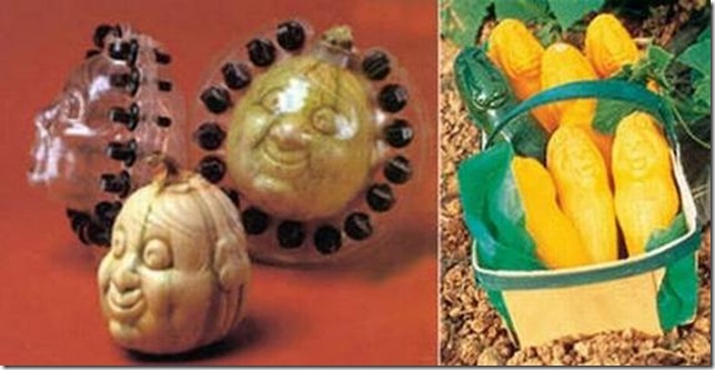 unusual-fruit-and-vegetables30