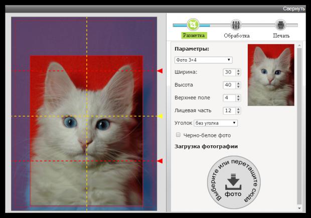 5 онлайн-сервисов для создания фото на документы
