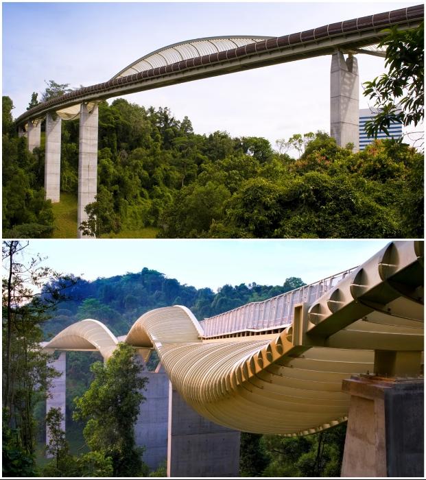 274-метровый мост Henderson Waves соединил живописные места у горы Фабер и парк Telok Blangah (Сингапур).