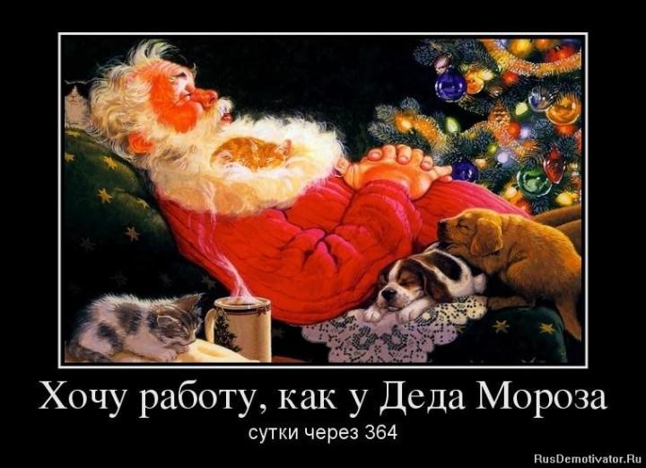 Хочу работу, как у Деда Мороза - сутки через 364