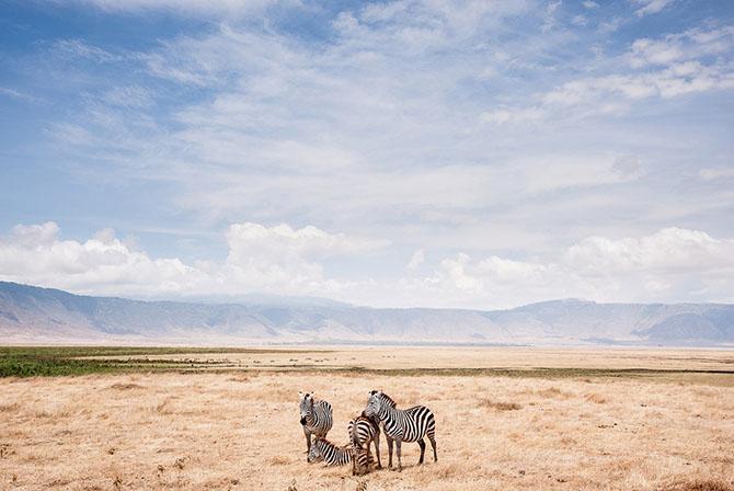 Победители конкурса фотографии National Geographic 2014