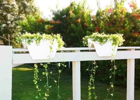 16 очаровательных сезонных идей для сада на балконе фото 15