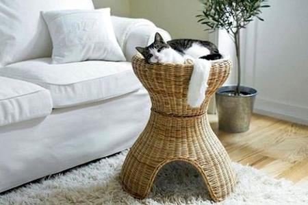 Спальня для любимой кошки: 10 милых идей фото 7