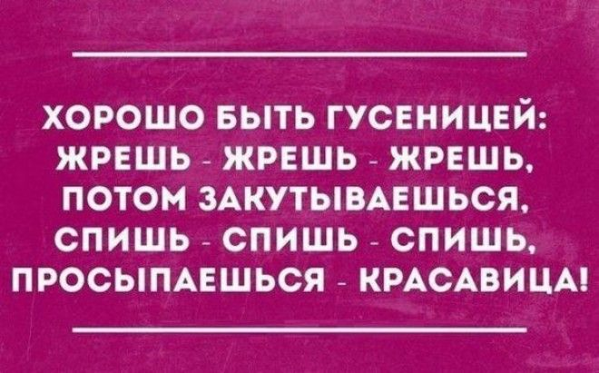 Подборка открыток от мастеров сарказма