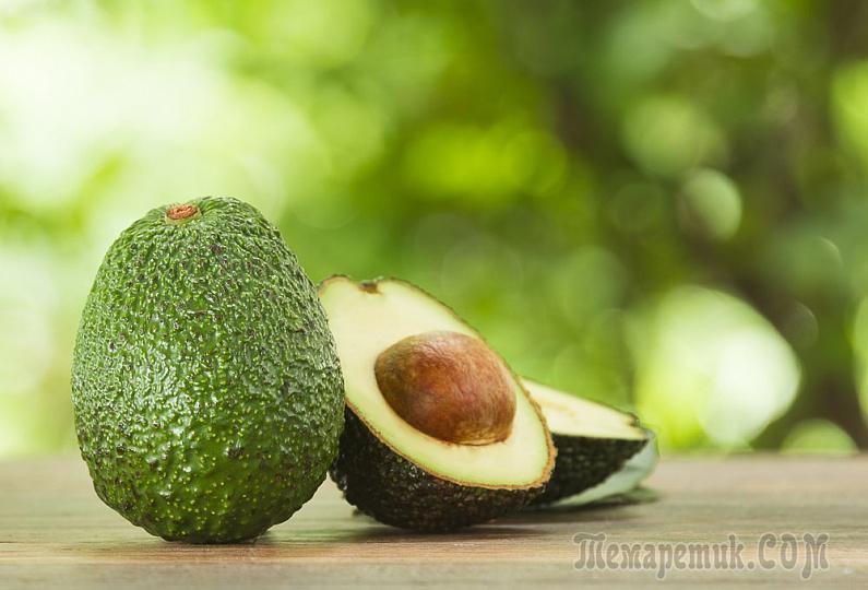 Косточка авокадо польза и вред для организма