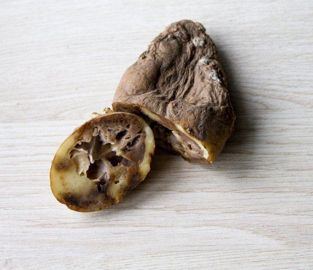 Больной картофель