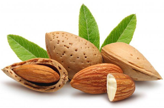 чем полезен миндаль орех для беременных женщин