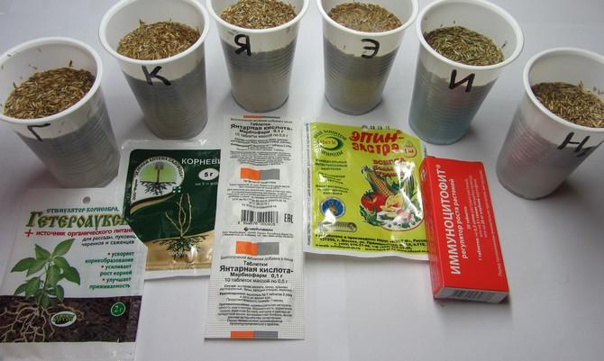 Обработка семян стимуляторами