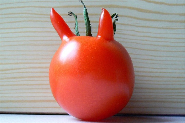 FunnyShaped08 Вальяжная редька и другие фрукты овощи, забывшие, что они растения