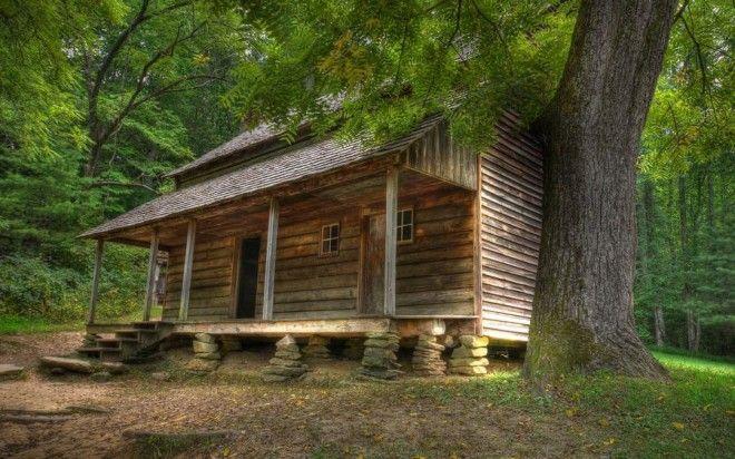 houseinwood12 Самые красивые дома в лесу