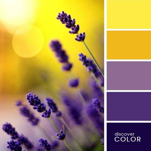 Сочетания цветов. Полезно знать