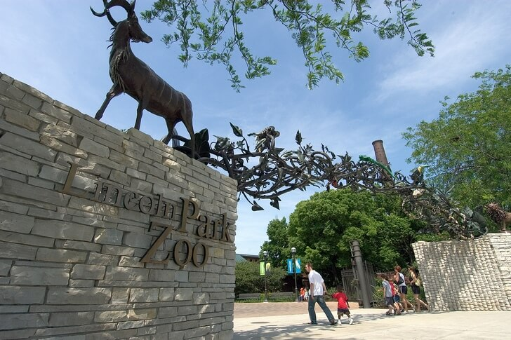 lincoln-park-zoo