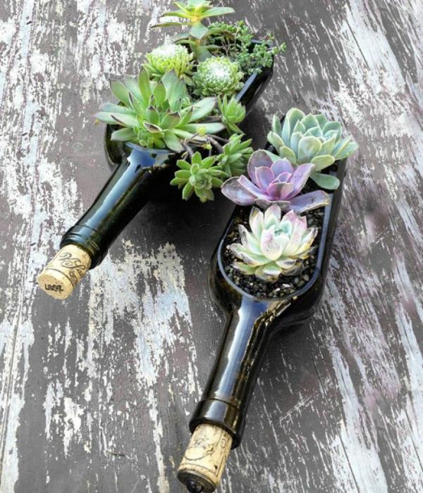 Разрезайте винные бутылки вдоль и поперек и делайте из них цветочные горшки.