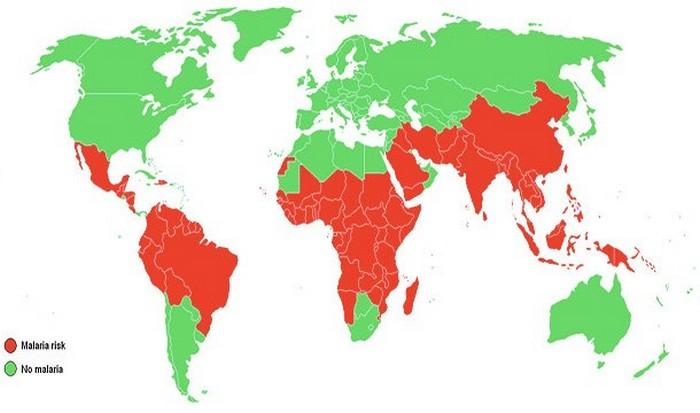 Изменения климата и лихорадка денге.