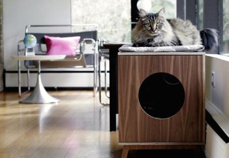 Спальня для любимой кошки: 10 милых идей фото 1