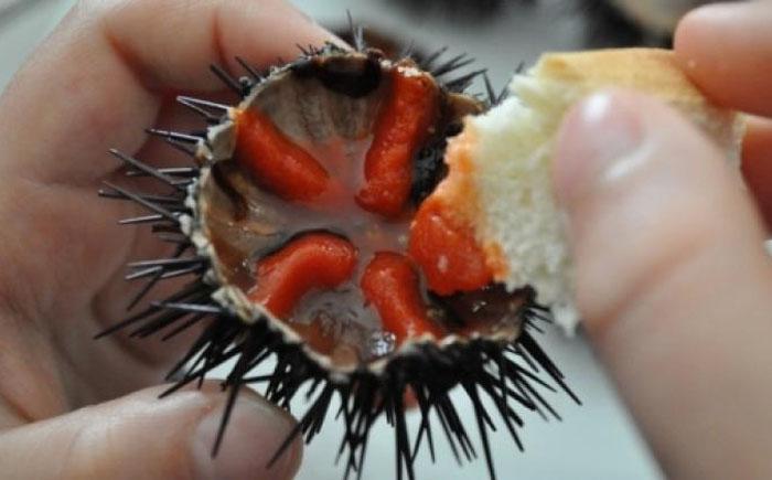 FoodsEatenAlive02 Съешь живым: 10 самых садистских блюд в мире