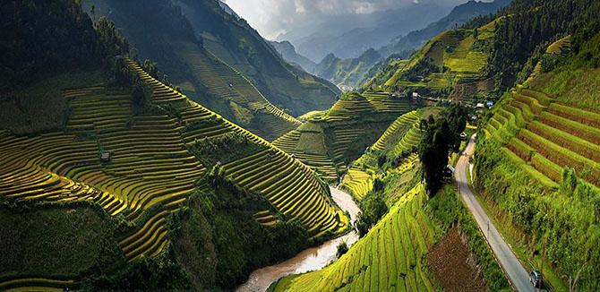 Завораживающие фотографии рисовых террас