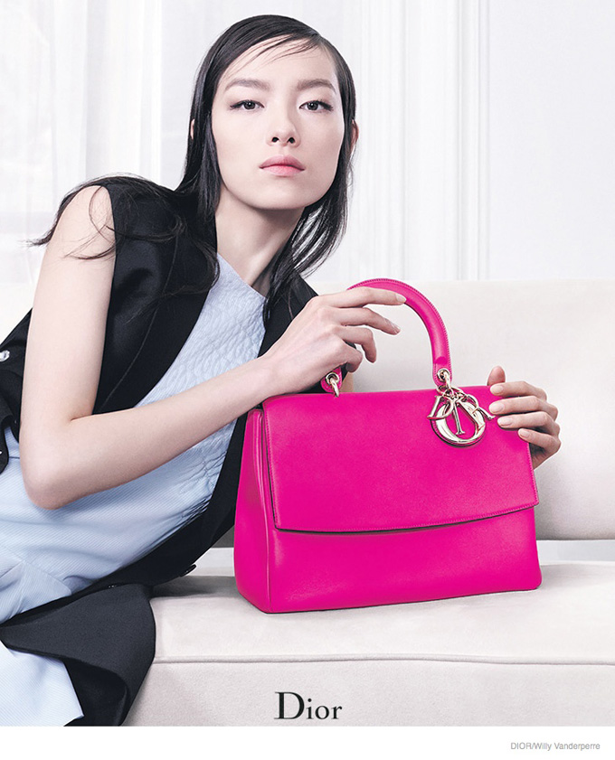 dior-accessories-2014-fall-ad-campaign01.jpg