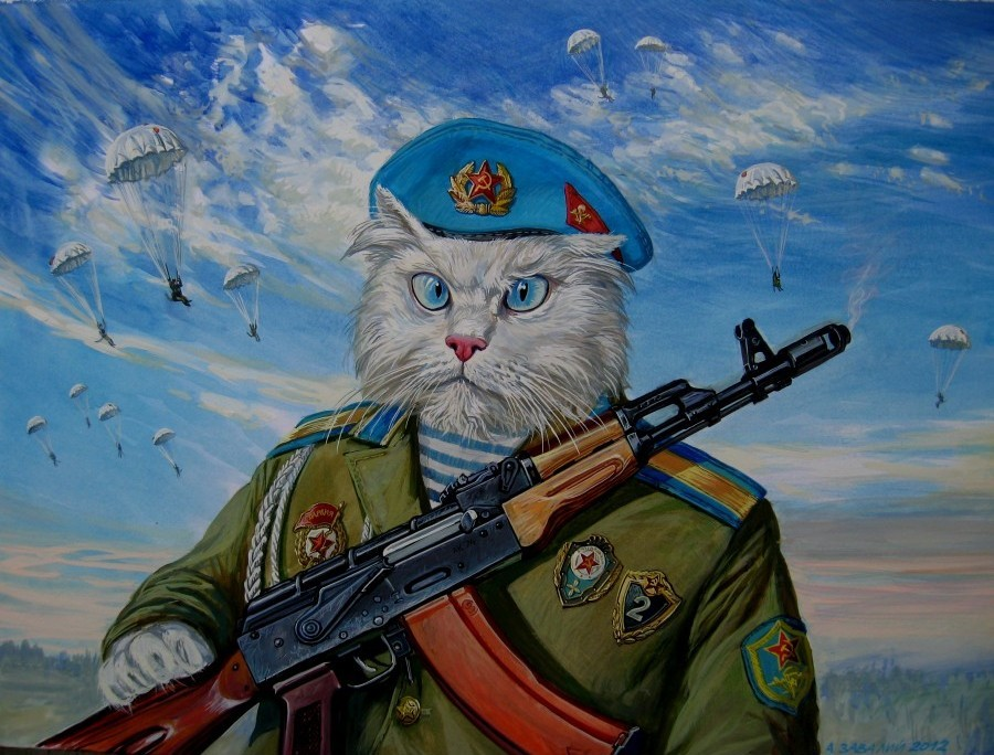 Коты десантники картинки