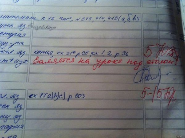 Учительские перлы изшкольных дневников школа, юмор, дневник, записи, записи в дневниках