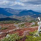 14 памятников ЮНЕСКО на территории России, о которых знают не все