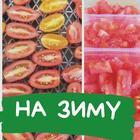 Готовлю так годами! Самый легкий и вкусный способ заморозки помидор