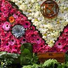 Крупнейшая в Европе цветочная выставка The RHS Chelsea Flower Show