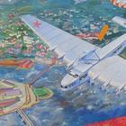 Агиткрепость с крыльями: самый странный самолет СССР