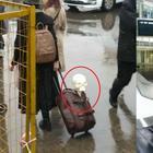 «К поездке готовы!» - фото пассажиров с их удивительным багажом