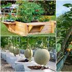 13 доступных идей по созданию высоких грядок, которые украсят сад или огород