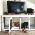 25 потрясающих спальных мест для собак
