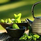 8 напитков, которые обязательно должны входить в рацион питания человека