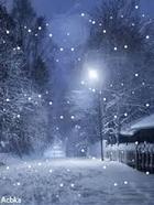 Декабрьская ночь (Стих)