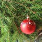 Избавляемся от неудач и привлекаем процветание перед Новым годом