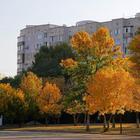 Крым. Симферополь. Осень.