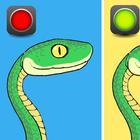 Как правильно вести себя при встрече со змеей и как отличить ядовитую от безобидной