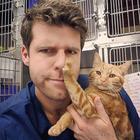 20 кошек, которые наотрез отказываются обниматься со своими хозяевами, ведь они сильные и независимые