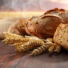 Почему никогда нельзя выбрасывать хлеб