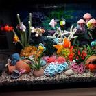 Красочный аквариум от любительницы вязания