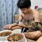 Кот, который «украл» мужа