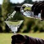 «In vino veritas»: 15 неожиданных проблем, которые можно решить с помощью алкоголя