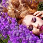 5 трав для женской красоты и здоровья